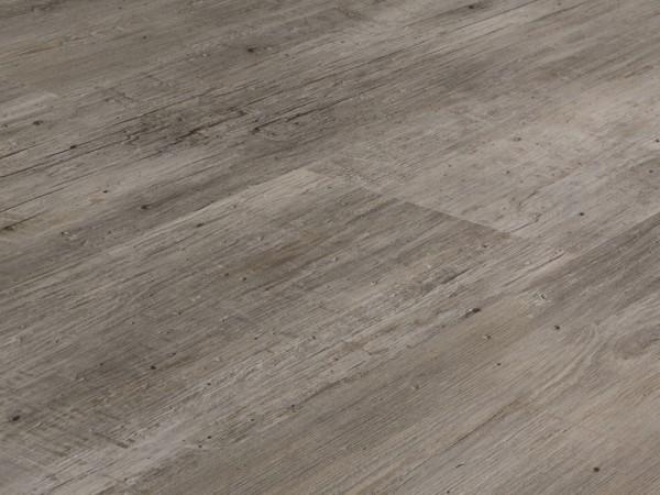 Vinylboden Holzoptik, Check one Preußen Kiefer, 4,0 x 180 x 1220 mm, scharfkantig, Nutzungsklasse 23/31, Nutzschicht 0,3 mm, mit stabiler RIGID Vinyl Trägerplatte
